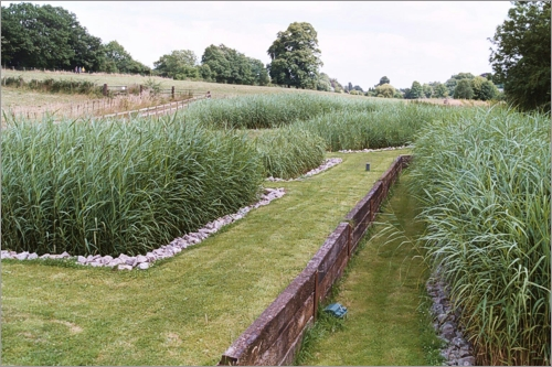 Constructed Wetlands Septic System