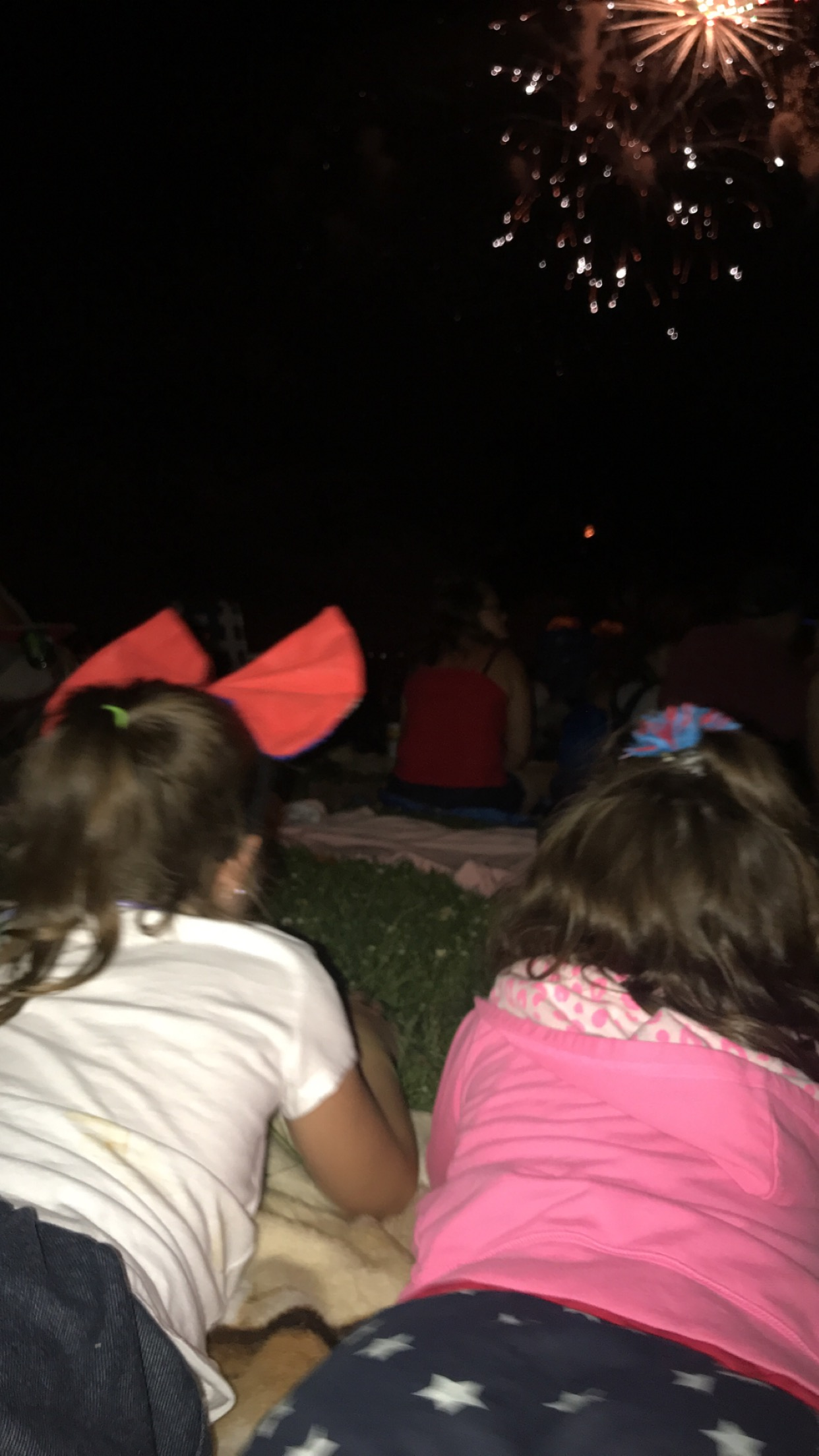 Hailey and Lydia, buddies watching the fireworks :)