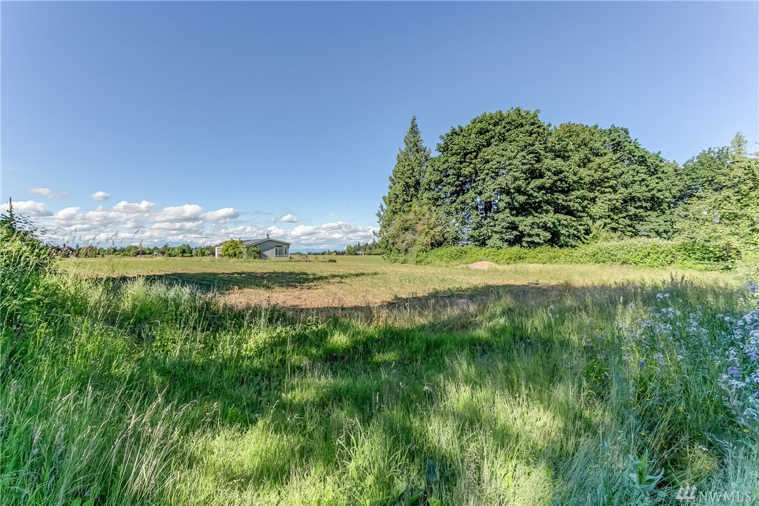 Homestead Bellingham Washington Waschke Road Land Property