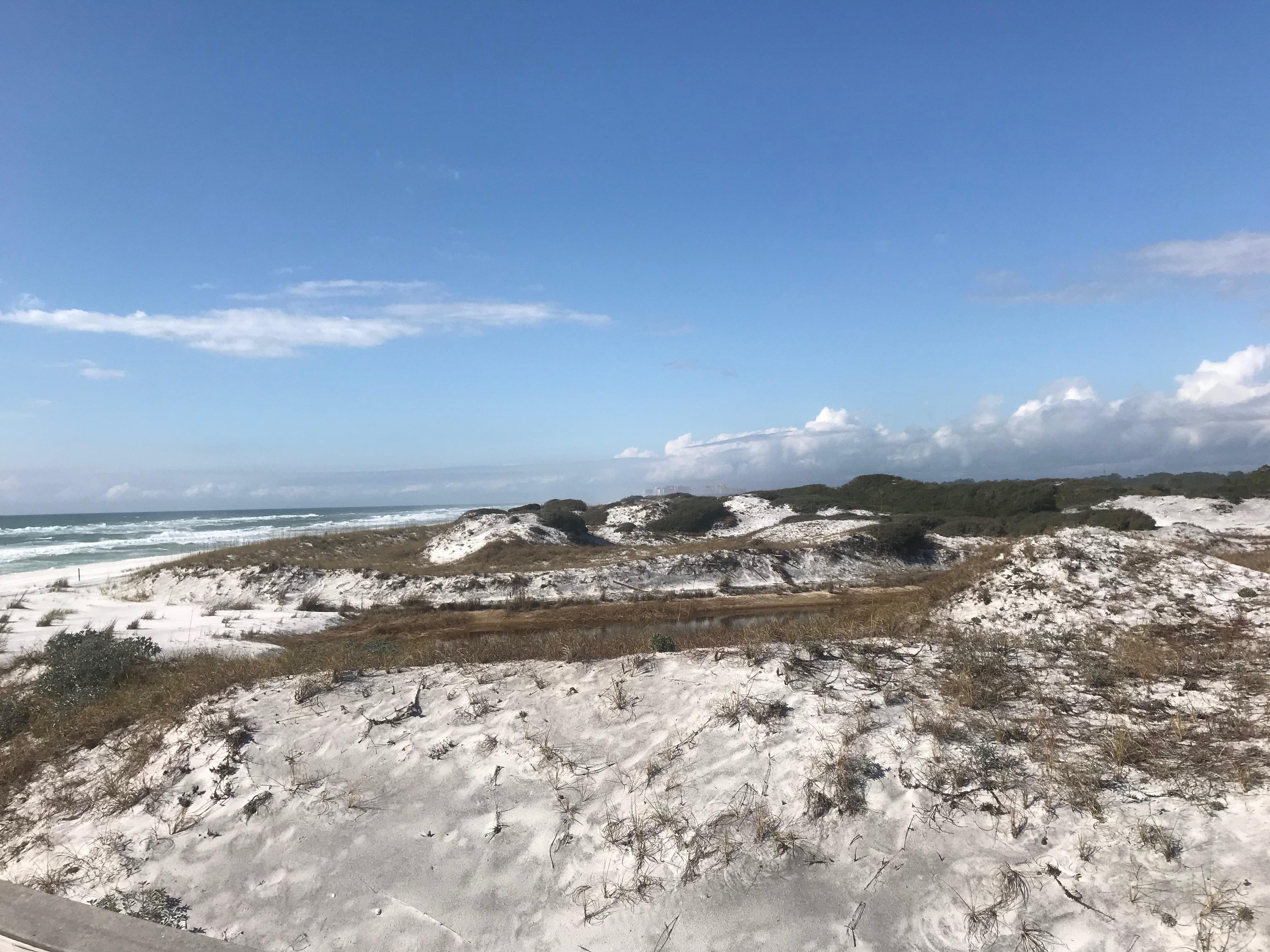 Santa Rosa Beach Dunes
