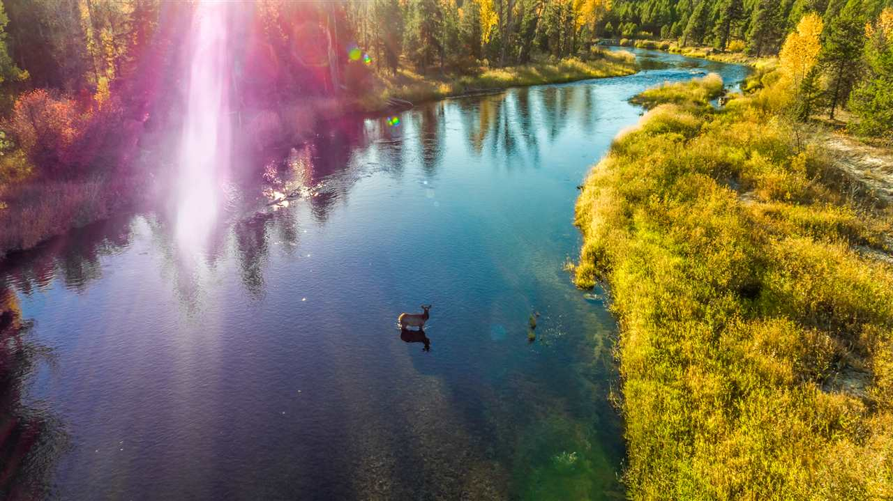 Land for sale in McCall Idaho