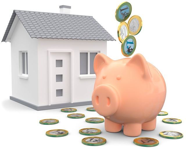Home Buyer Piggy Bank