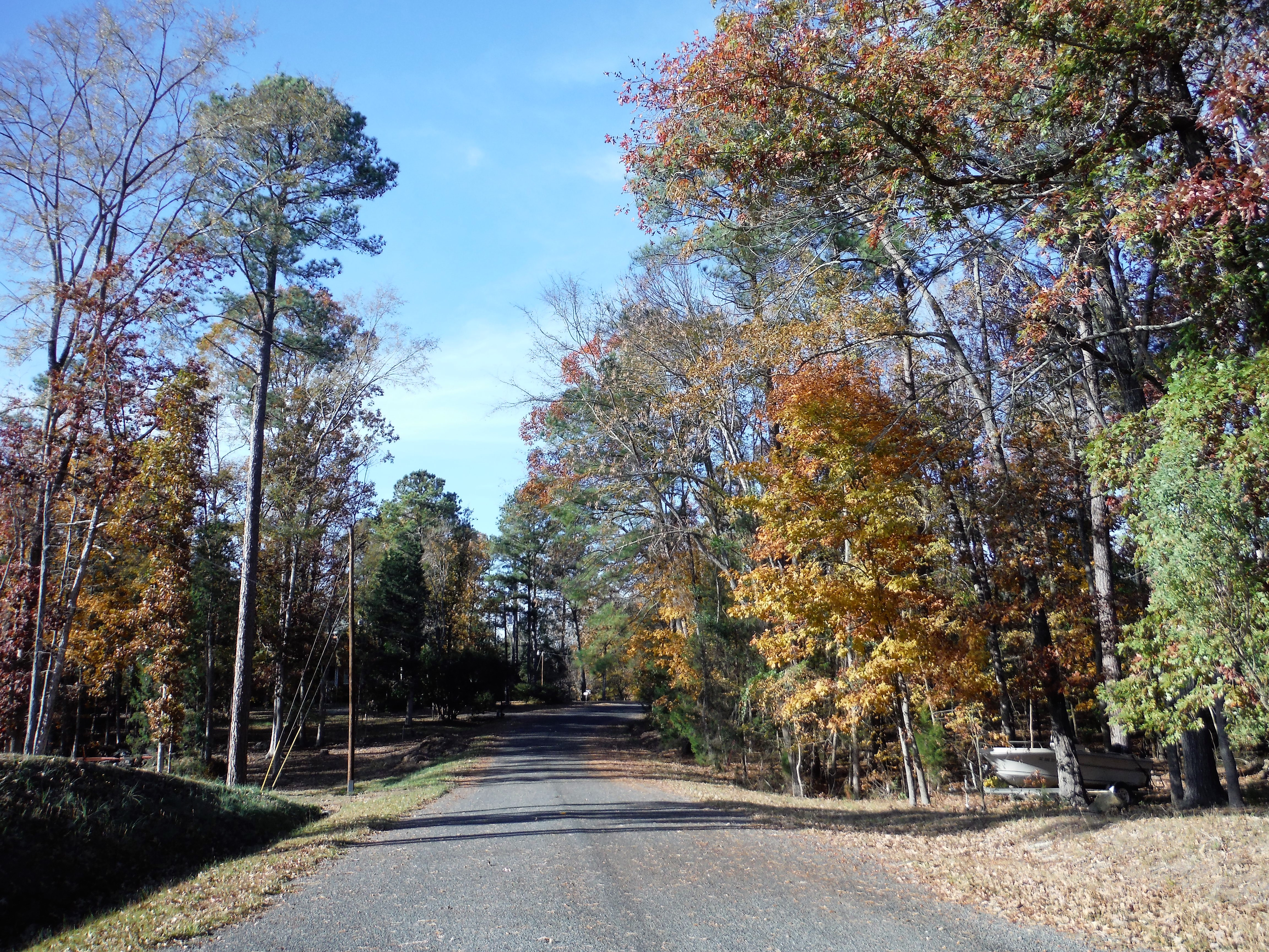 Peaceful, Paved Country Road