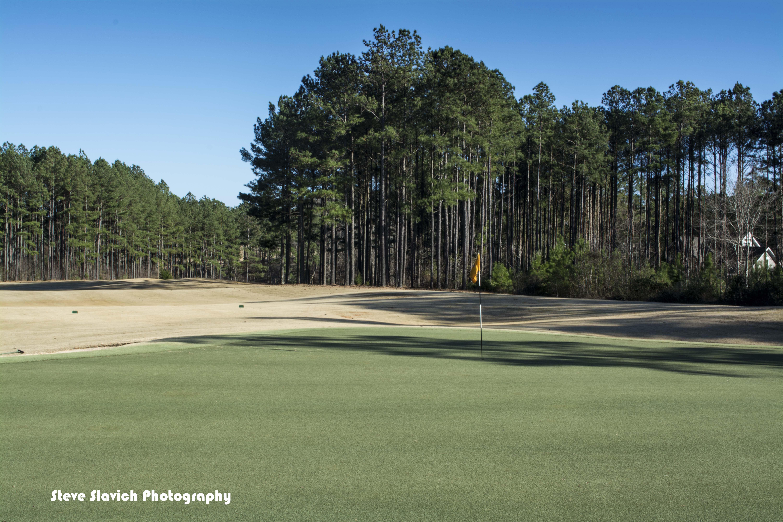 Cobblestone Park Golf