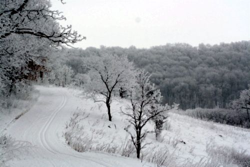 Chester Woods Rochester MN