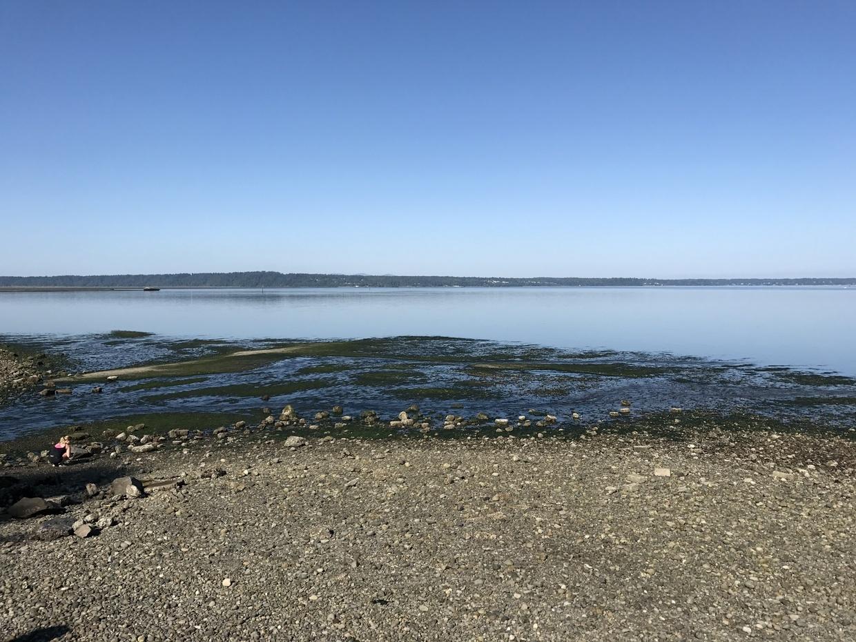 Sequalitchew Beach on Puget Sound
