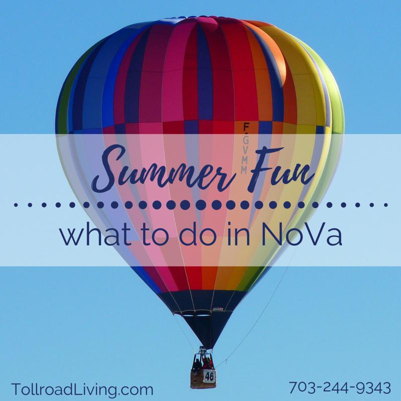 summer fun - things to do in NoVa