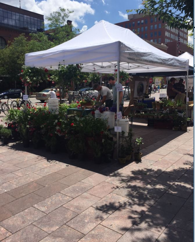 Denver Farmers Markets: Jun 8 2017 Whats Denver Doing Union Station Farmers Market