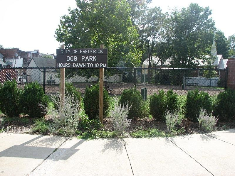 Dog Park adjacent to Baker Park