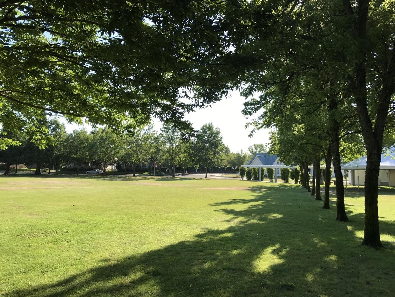 Wide green lawns