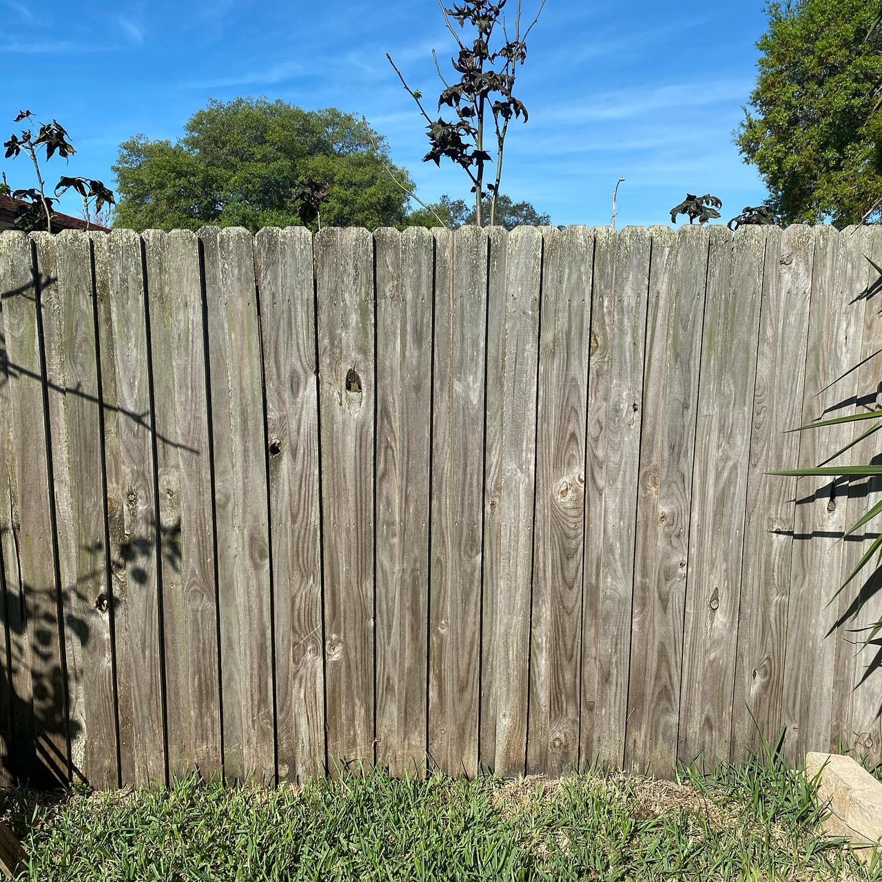 Before- Original Fence