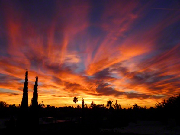 Havasu Sunsets
