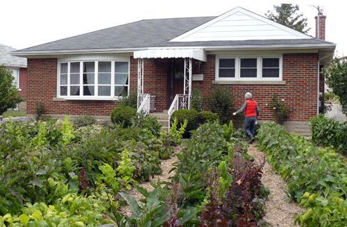 Front Yard Farm