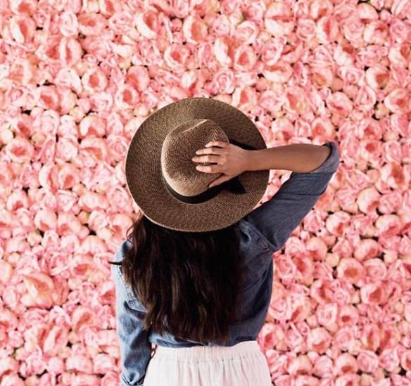 Flower Vault SA