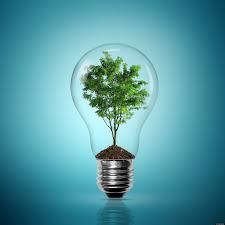 buy rent home energy efficient