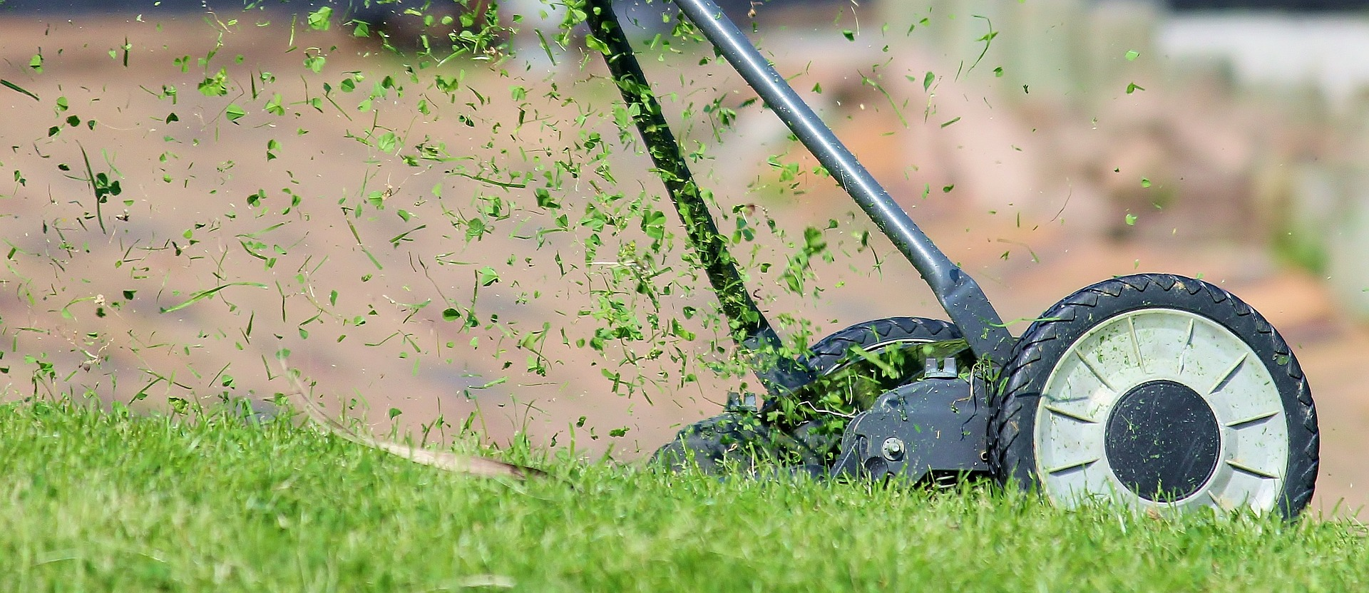 No time for slacking! Follow these 4 tips now for a greener lawn come Spring!