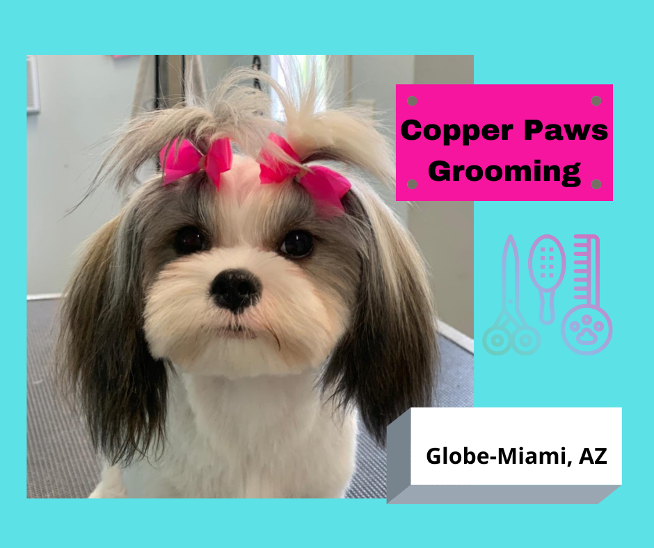 Copper Paws Grooming