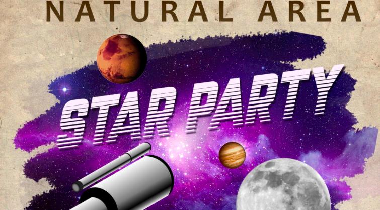 A Stellar Night