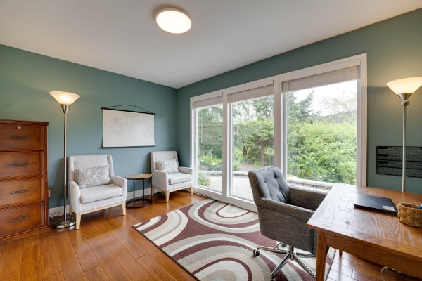 open living room with blue rug and couch