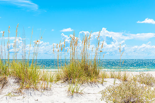 Search Indian Rocks Beach, FL Homes For Sale