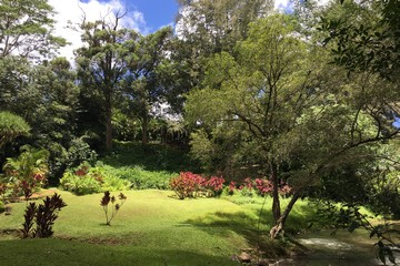 Search Kauai Commercial and Land For Sale