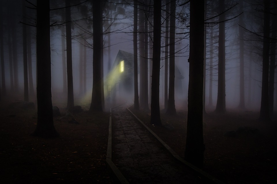 Haunted Places Bellingham Washington Whatcom County Fog Mist Trees Forest