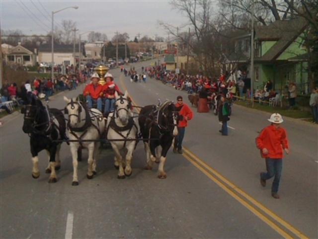 Horse Drawn Carriage Parade Lebanon Ohio