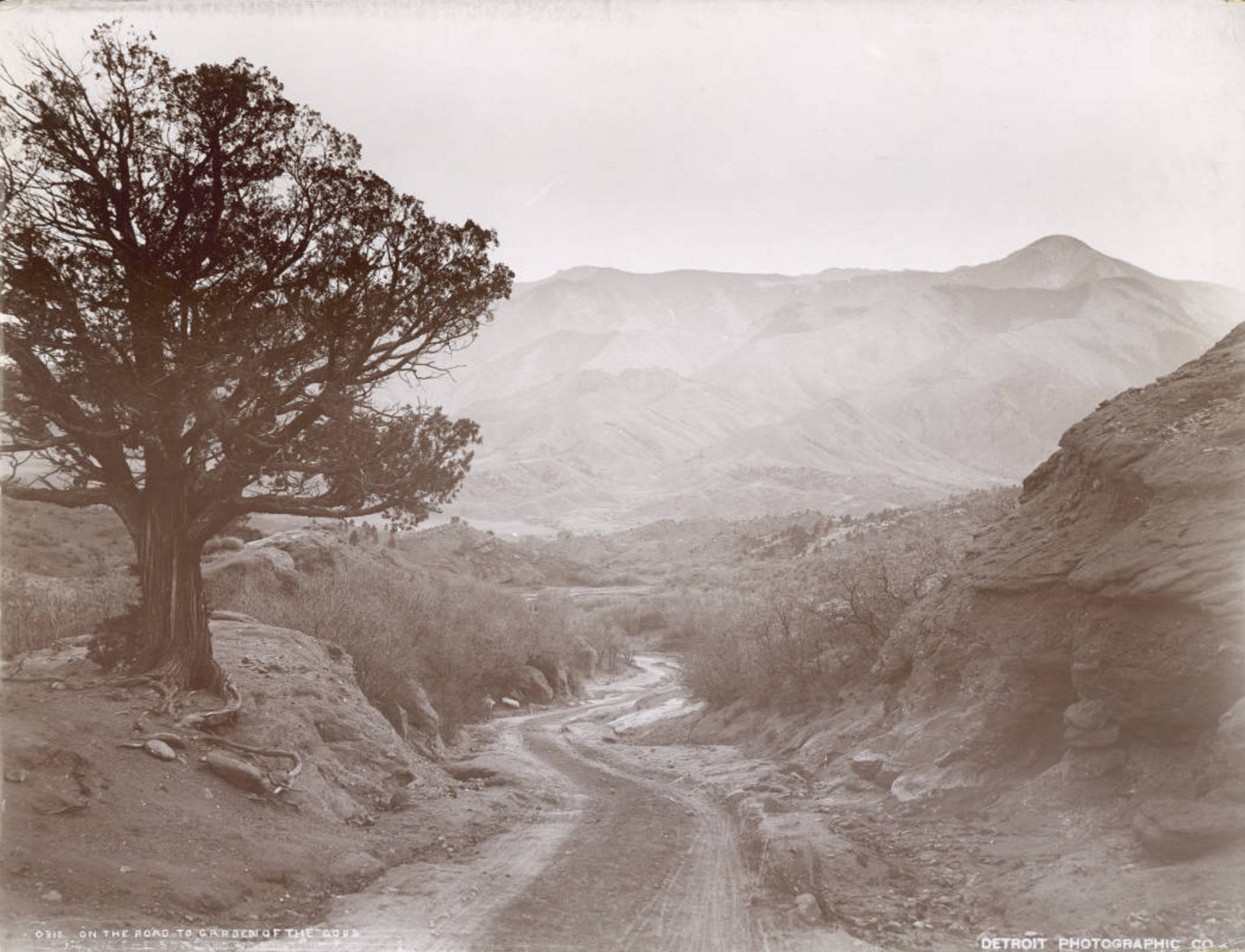 Image titleOn the road to Garden of the Gods,W.H. Jackson sample album. Colorado Book VII, no. 76, Denver Public Library