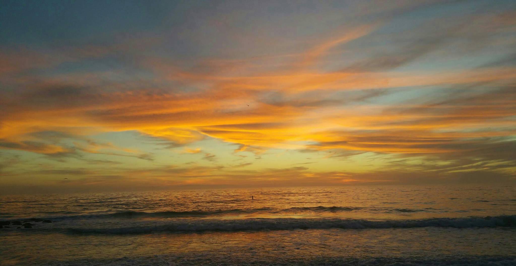 Photo taken by Amanda Burg, Anna Maria Island