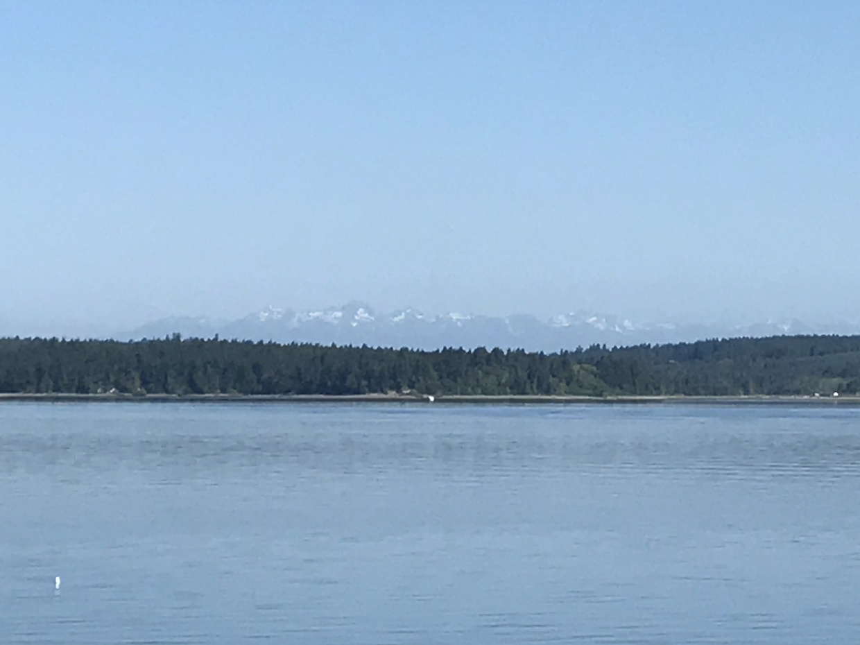 Olympic Mountains in the distance