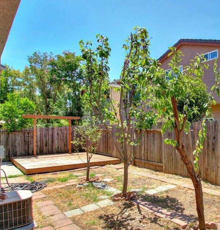 1015 San Gallo Ter Davis Backyard